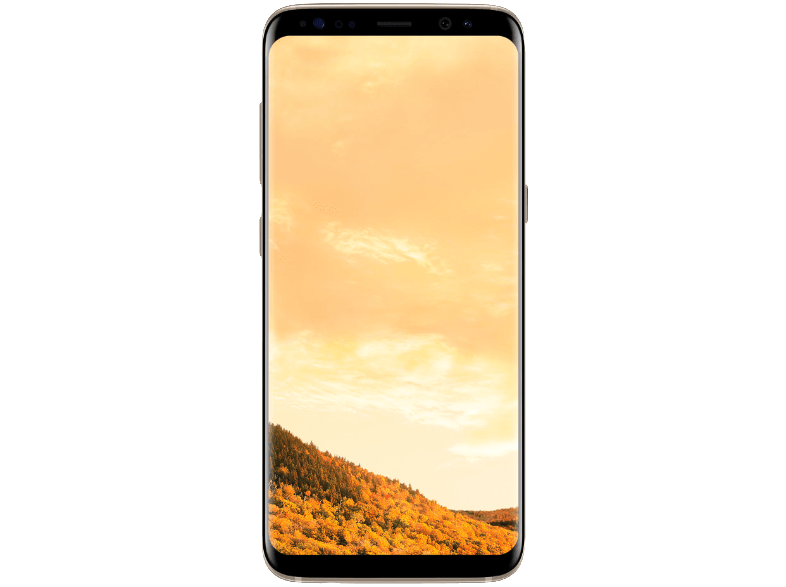 SAMSUNG Galaxy S8 Plus 64 GB Gold Akıllı Telefon