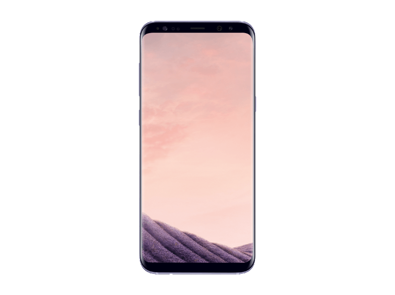 SAMSUNG Galaxy S8 Plus 64 GB Orchid Grey Akıllı Telefon